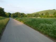 ... immer auf dem Rheinradweg ...